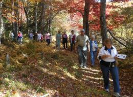 Guests enjoy the natural beauty of the Morrison Nature Walk
